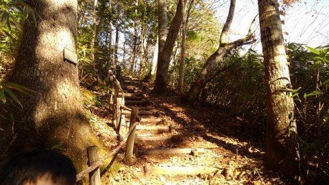 緑のふるさと森林公園入口