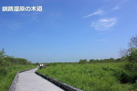 釧路湿原の木道